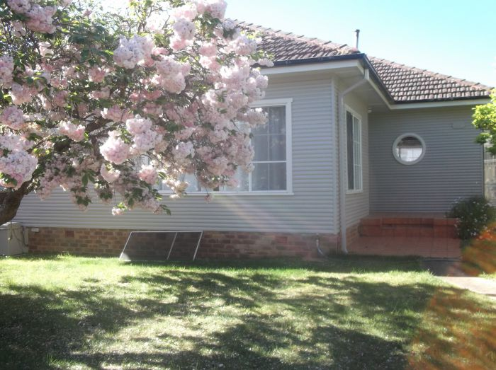 Magnolia Corner - Accommodation Kalgoorlie