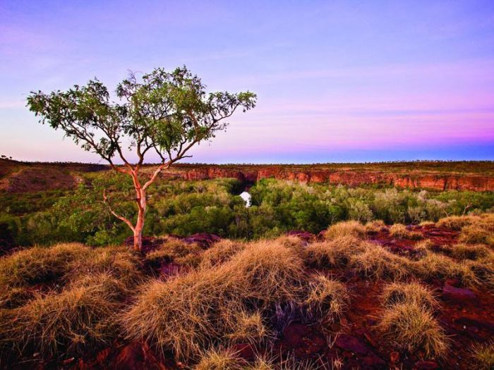 Island Stack Boodjamulla Lawn Hill National Park - Accommodation Kalgoorlie