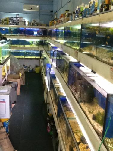 Clearwater Aquariums - Accommodation Kalgoorlie