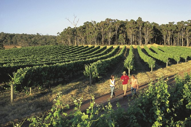 Margaret River Caves Wine and Cape Leeuwin Lighthouse Tour from Perth - Accommodation Kalgoorlie