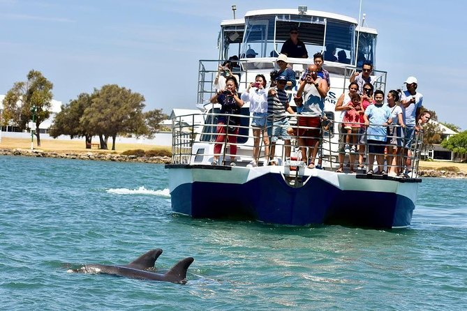 Mandurah Dolphin and Scenic Canal Cruise - Accommodation Kalgoorlie