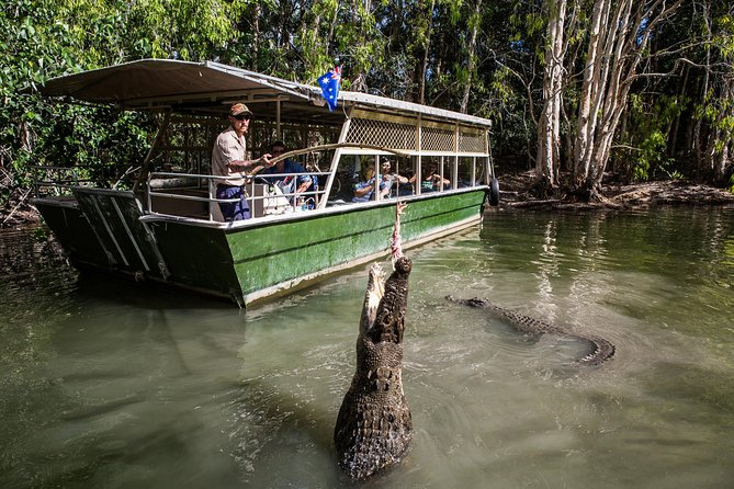 Hartley's Crocodile Adventures Day Trip from Palm Cove - Accommodation Kalgoorlie