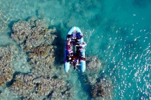 Glass-bottom boat tour with Whitehaven Beach - Accommodation Kalgoorlie