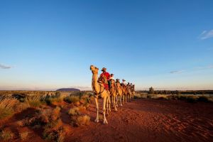 Uluru Small-Group Tour by Camel at Sunrise or Sunset - Accommodation Kalgoorlie