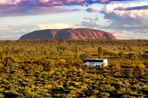 Coach Transfer from Kings Canyon Resort to Ayers Rock Resort - Accommodation Kalgoorlie