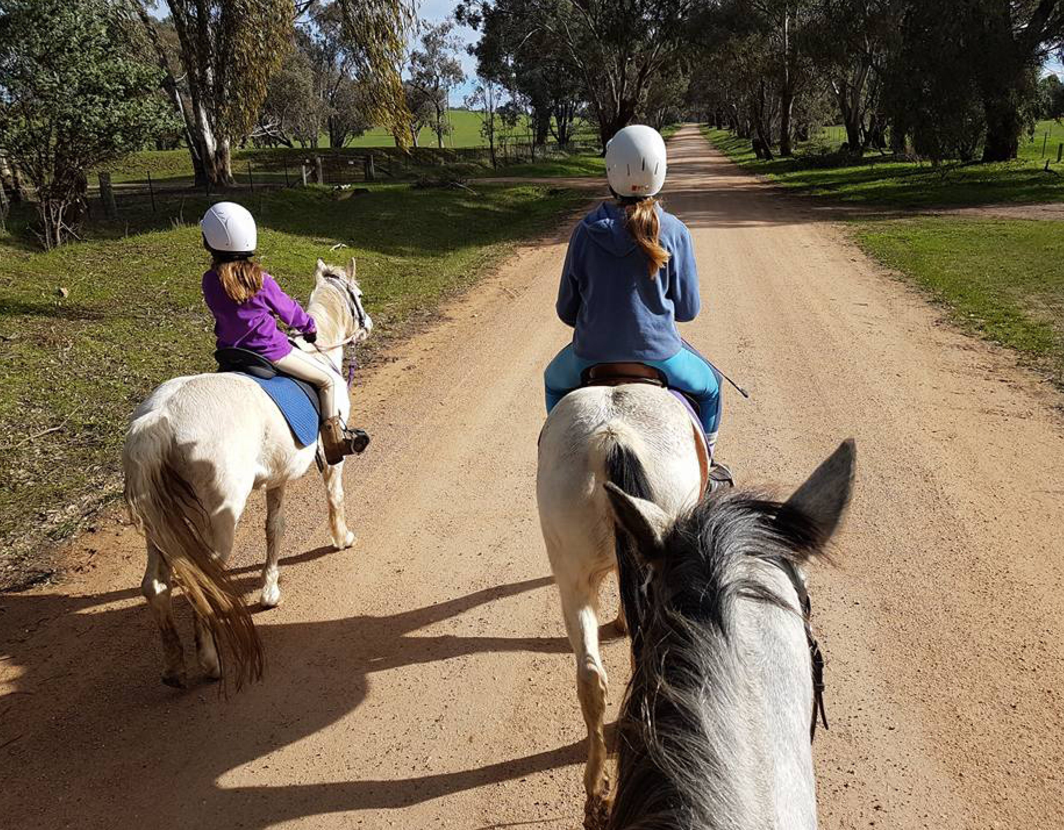 Bits and Boots Pony Rides - Accommodation Kalgoorlie