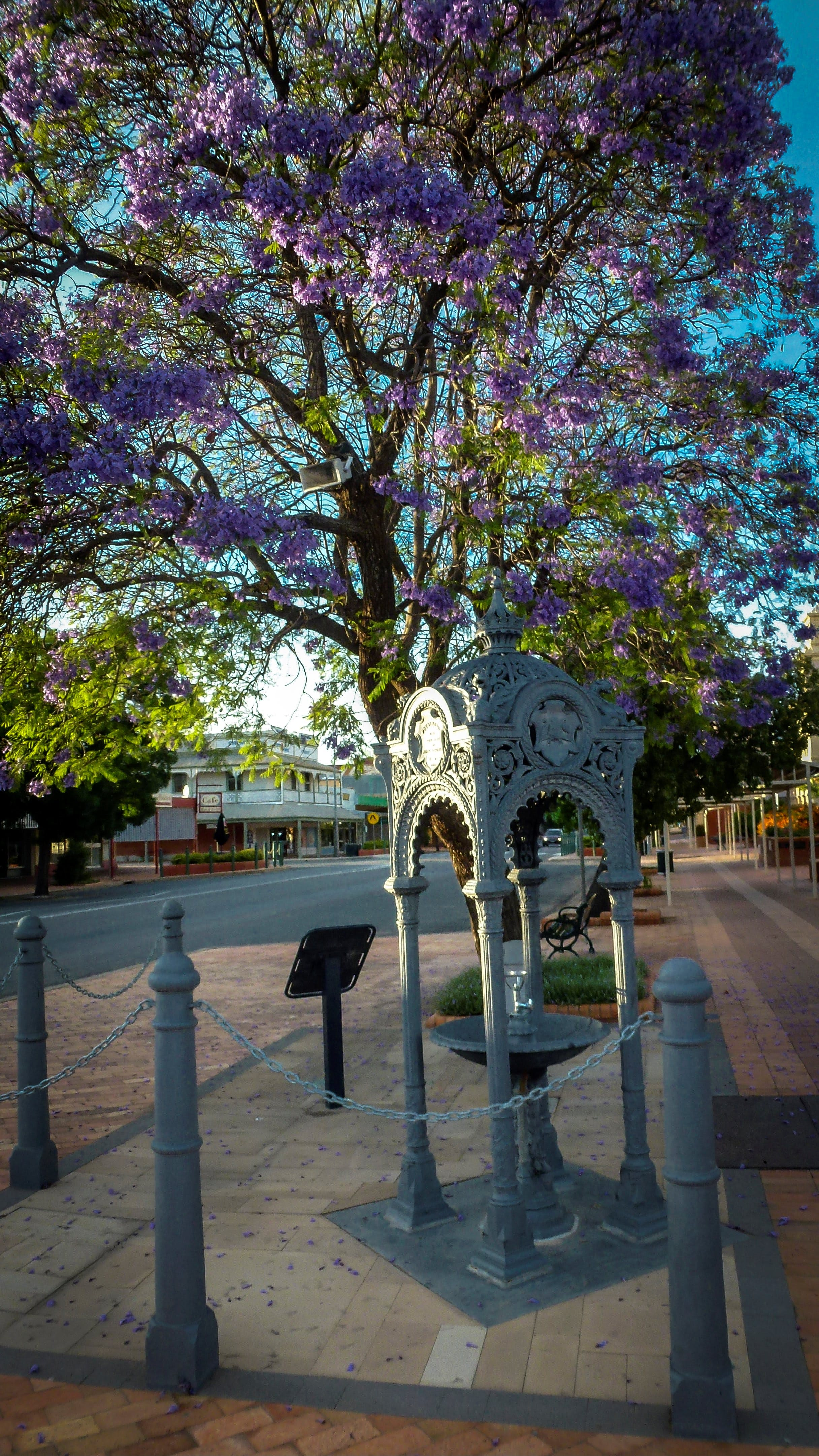 Witcombe Fountain - Accommodation Kalgoorlie