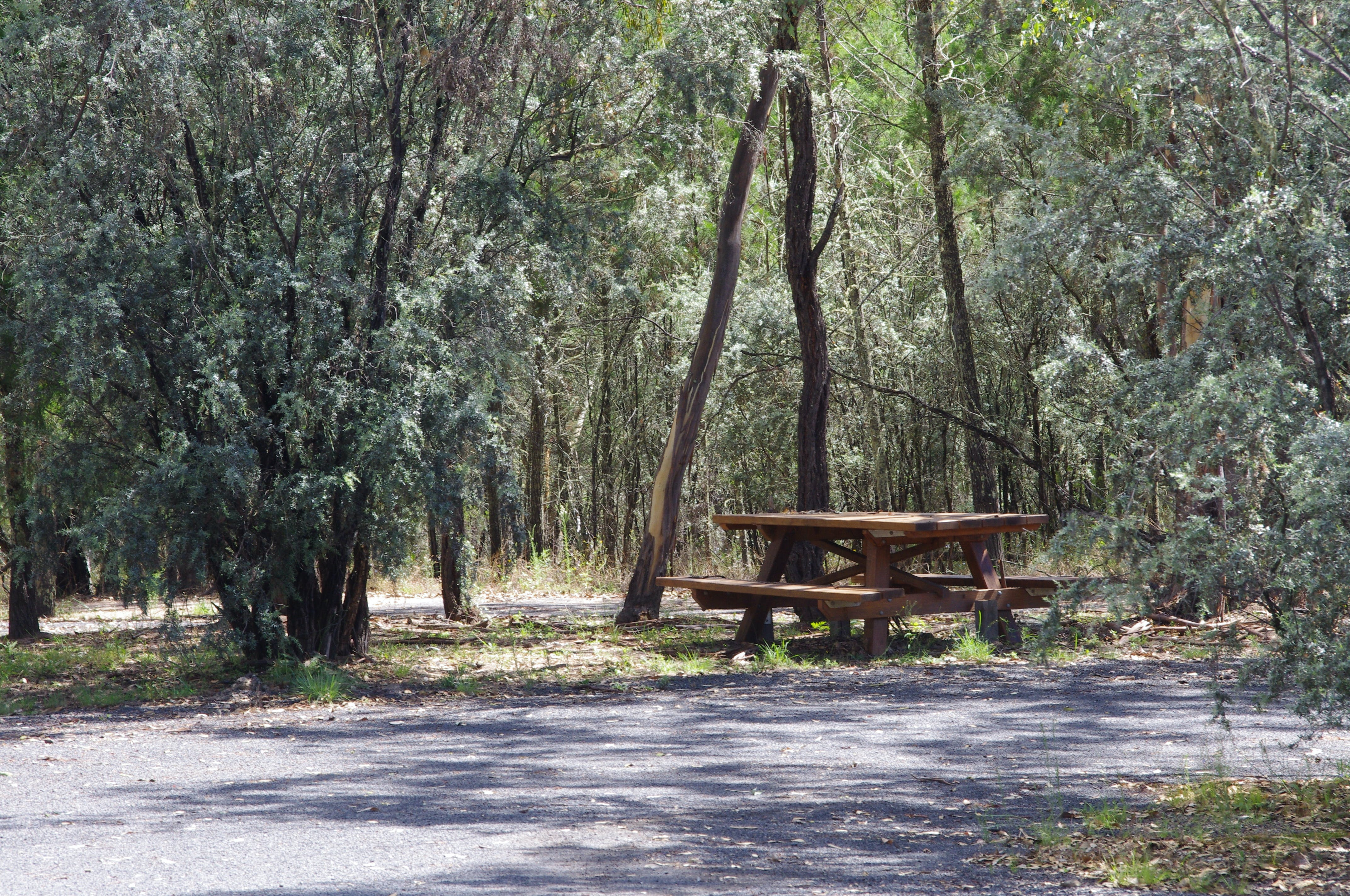 Goonoowigall State Conservation Area - Accommodation Kalgoorlie