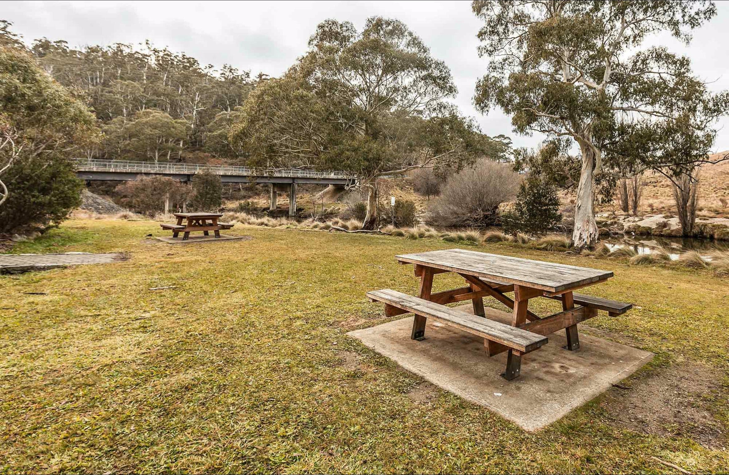 Thredbo River picnic area - Accommodation Kalgoorlie