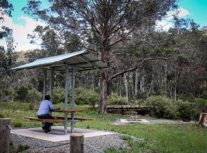 Barrington Tops State Forest - Accommodation Kalgoorlie