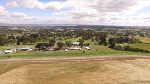 Colac Turf Club - Accommodation Kalgoorlie