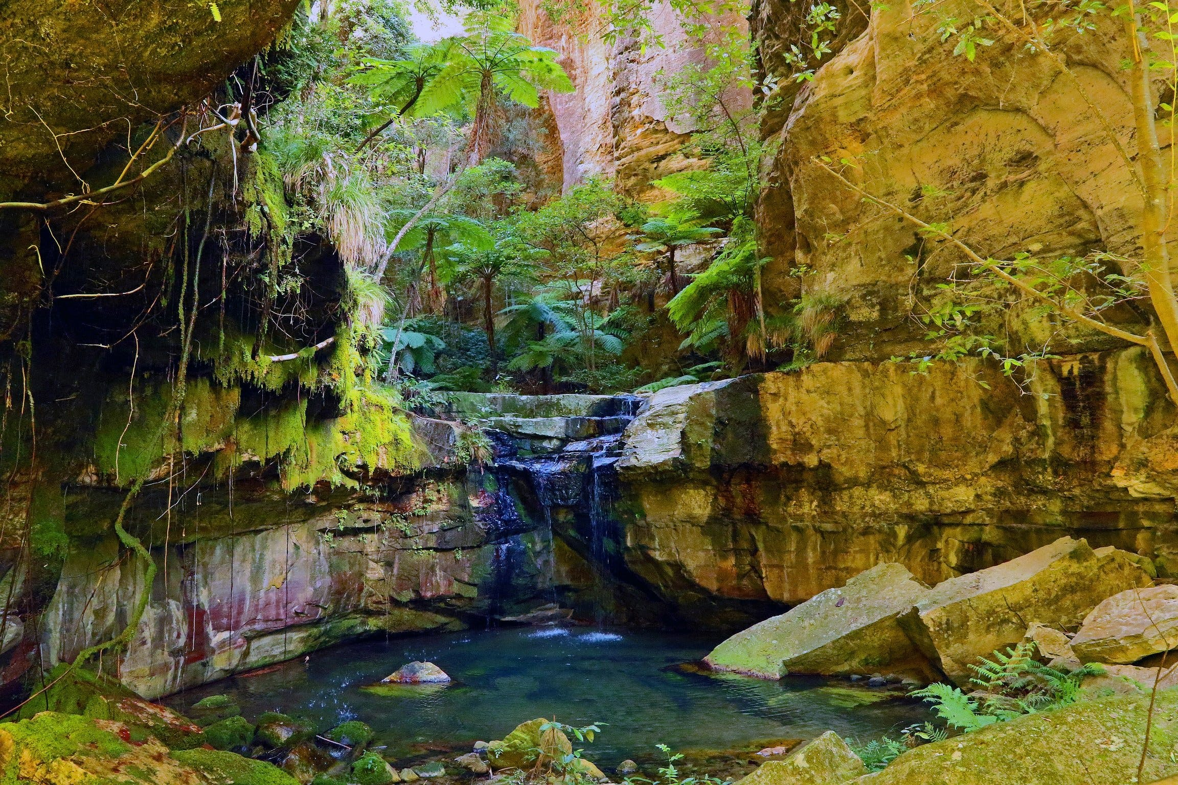 Glimpse of the Outback 5 Day Tour - Roma and Surrounds - Accommodation Kalgoorlie
