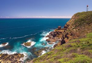 Bushrangers Bay Walking Track - Accommodation Kalgoorlie