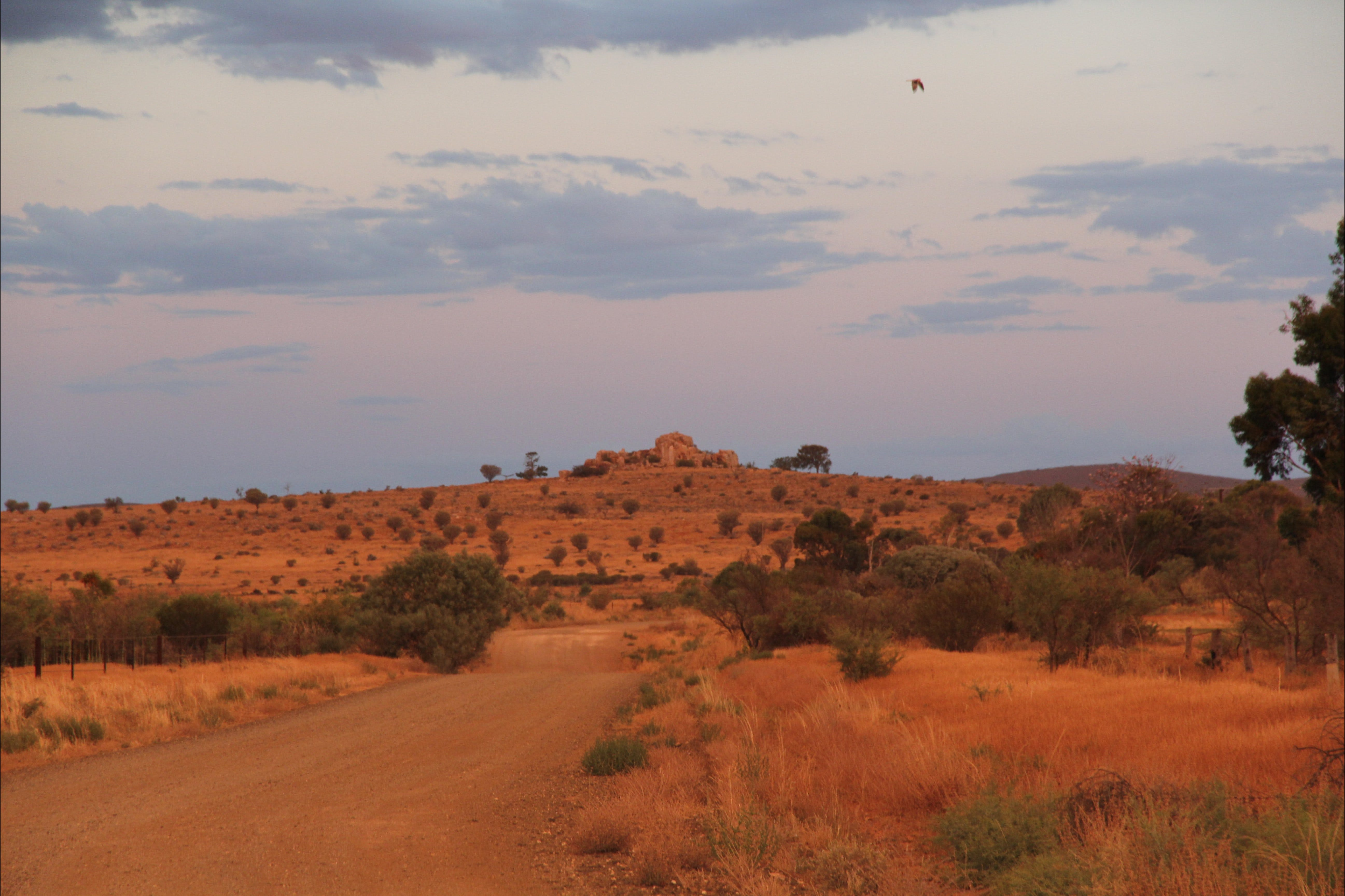 Castle Rock walk and Lookout - Accommodation Kalgoorlie