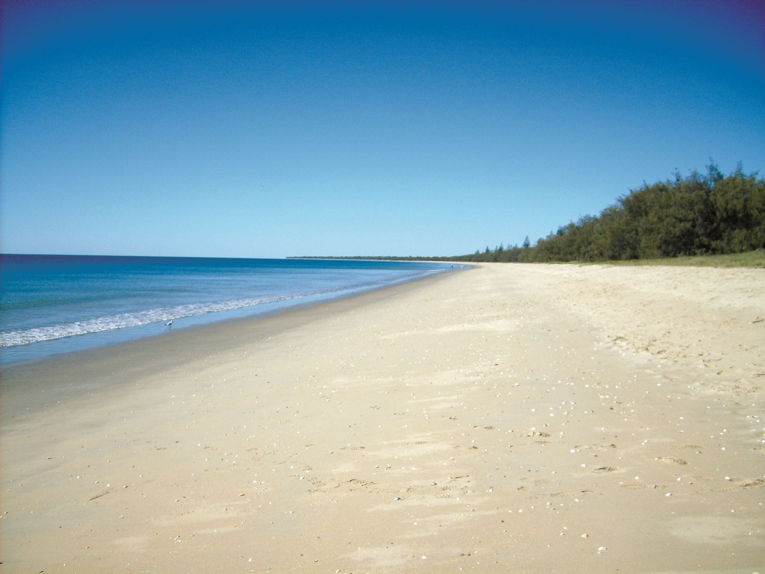 Coral Coast Pathways Woodgate Beach Section - Accommodation Kalgoorlie