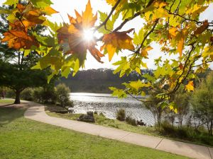 Wentworth Falls Lake - Accommodation Kalgoorlie