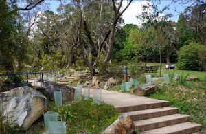 Wentworth Falls picnic area - Accommodation Kalgoorlie