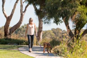Meningie Walking and Cycling Trails - Accommodation Kalgoorlie