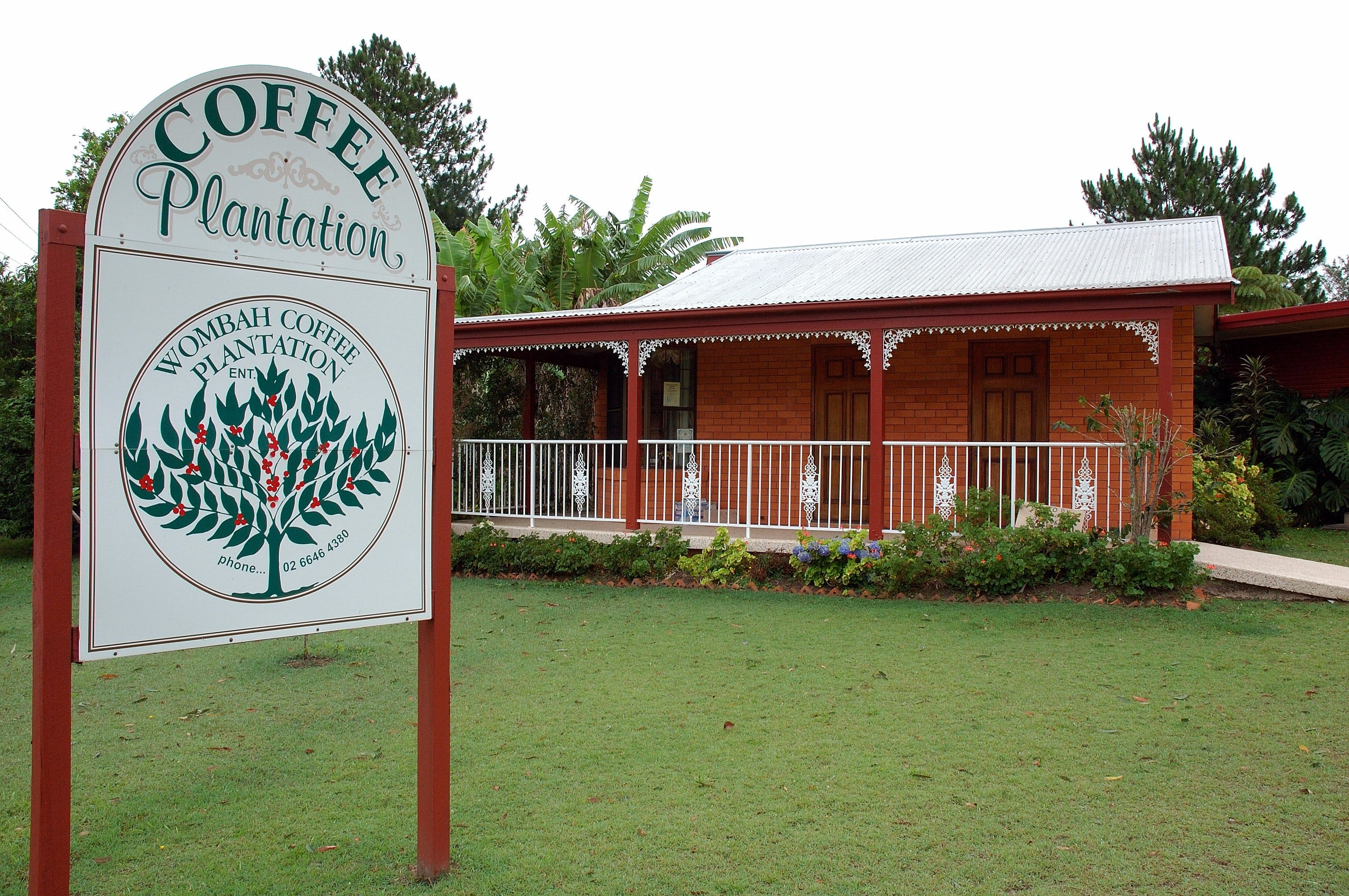 Wombah Coffee Plantation - Accommodation Kalgoorlie