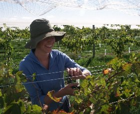 Kingsdale Wines - Accommodation Kalgoorlie