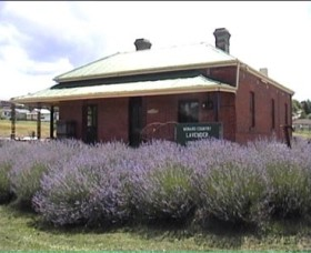 Lavender House in Railway Park - Accommodation Kalgoorlie