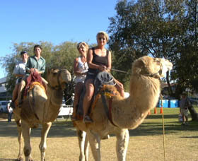 Calamunnda Camel Farm - Accommodation Kalgoorlie