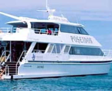 Poseidon Outer Reef Cruises - Accommodation Kalgoorlie