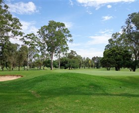 Singleton Golf Club - Accommodation Kalgoorlie