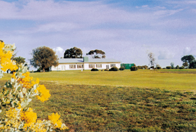 Lucindale Country Club - Accommodation Kalgoorlie