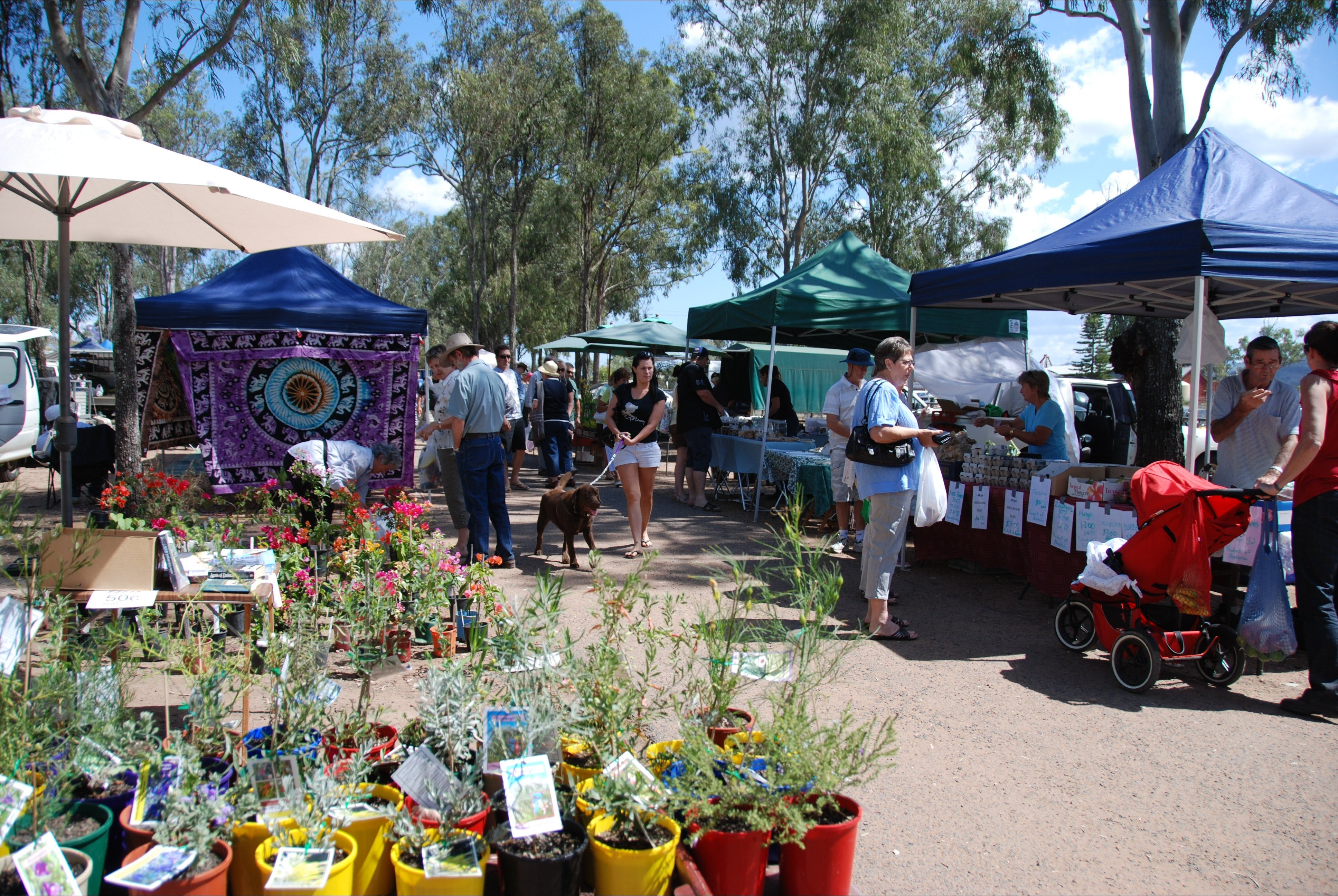 Fernvale Country Markets - Accommodation Kalgoorlie