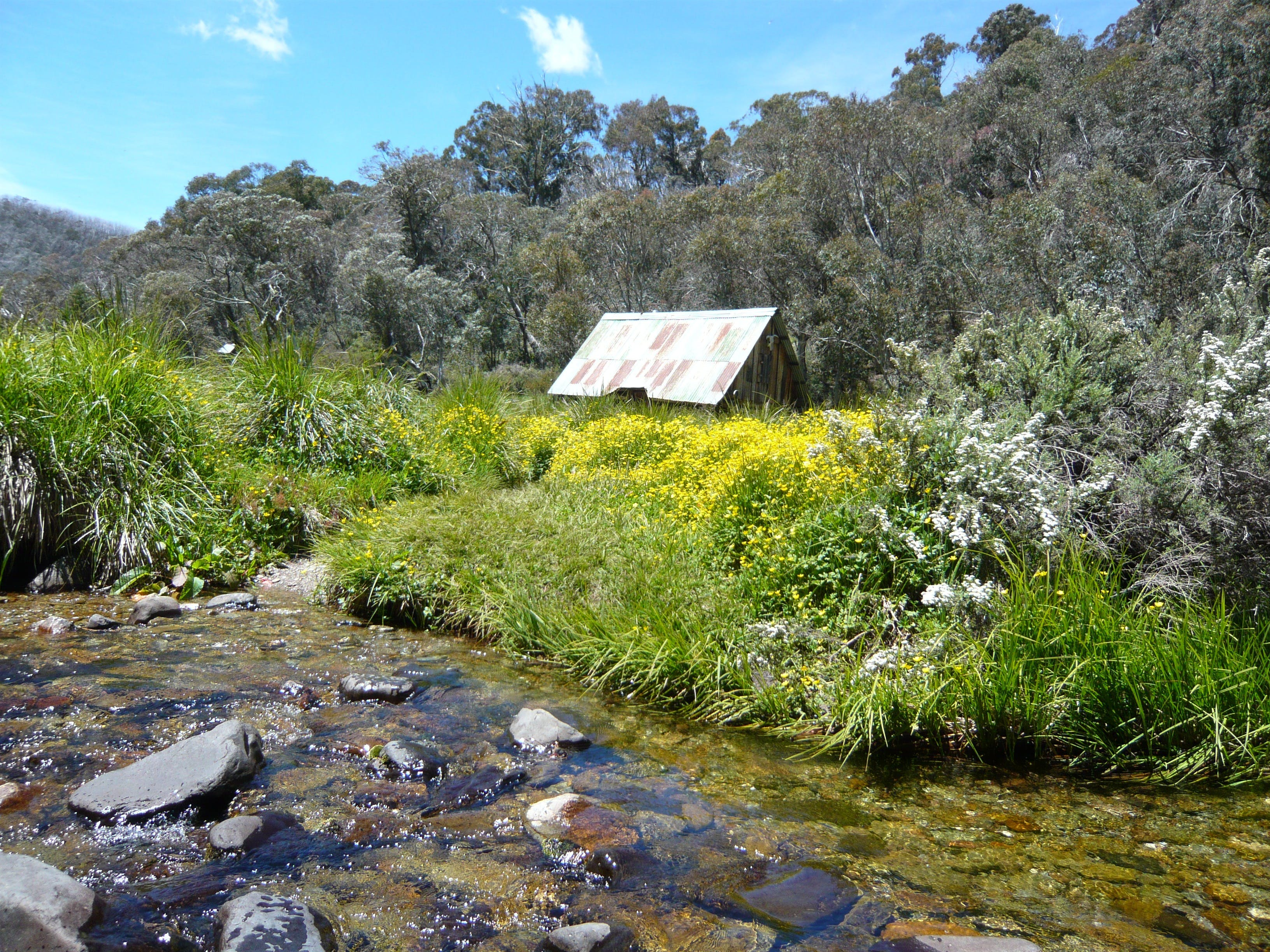 Hedonistic Hiking's Falls Creek to Hotham - Accommodation Kalgoorlie