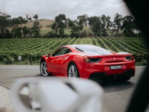 The Prancing Horse Supercar Drive Day Experience - Melbourne Yarra Valley - Accommodation Kalgoorlie