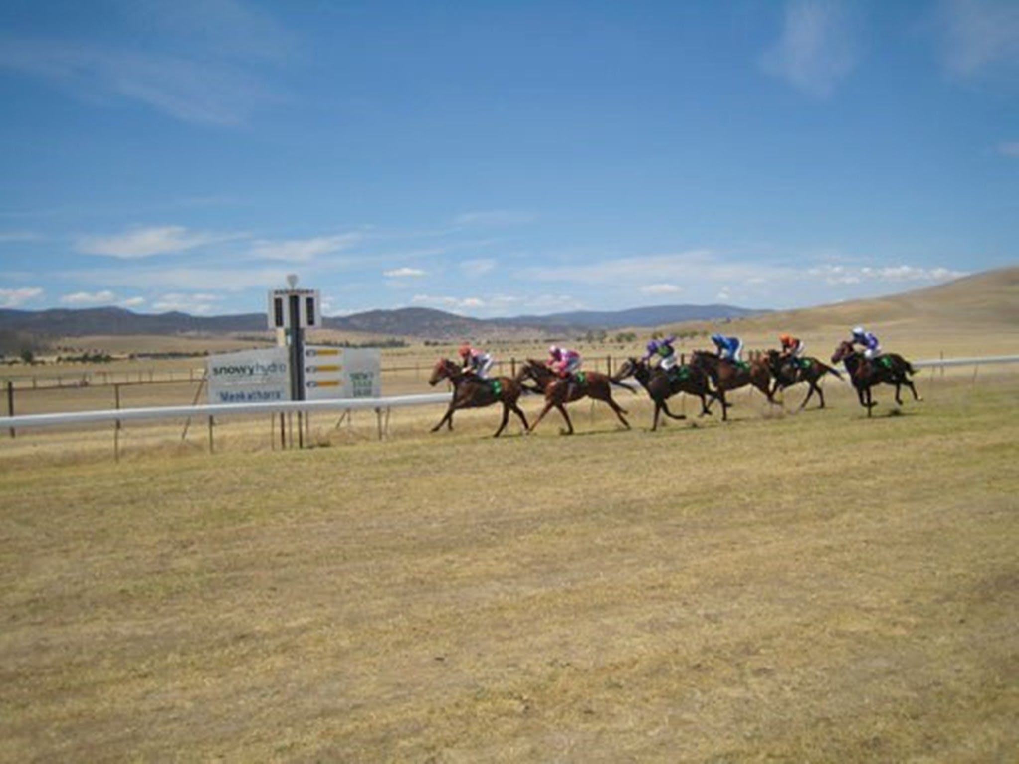Adaminaby Cup Race Day - Accommodation Kalgoorlie