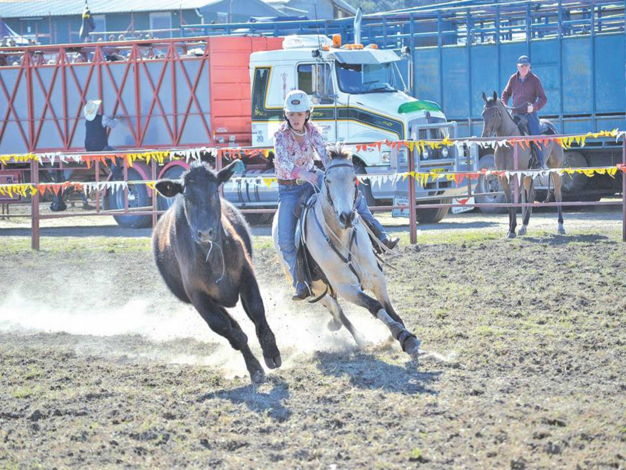 Gresford  Campdraft and Rodeo - Accommodation Kalgoorlie
