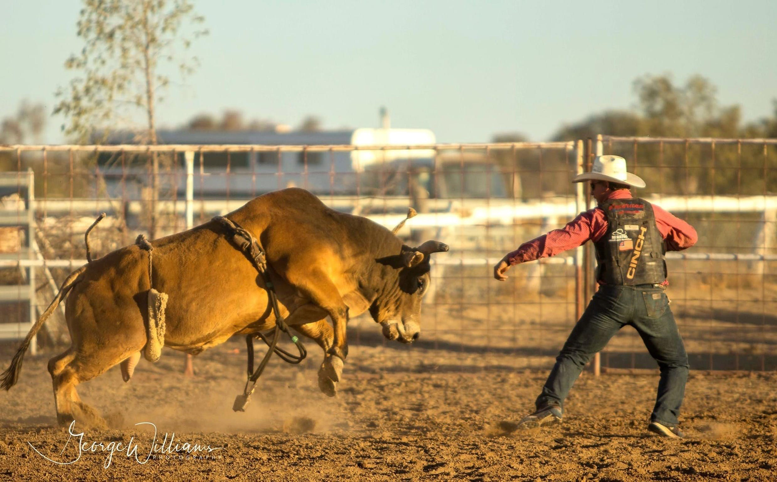 Walgett Charity Bushman's Carnival Rodeo and Campdraft - Accommodation Kalgoorlie