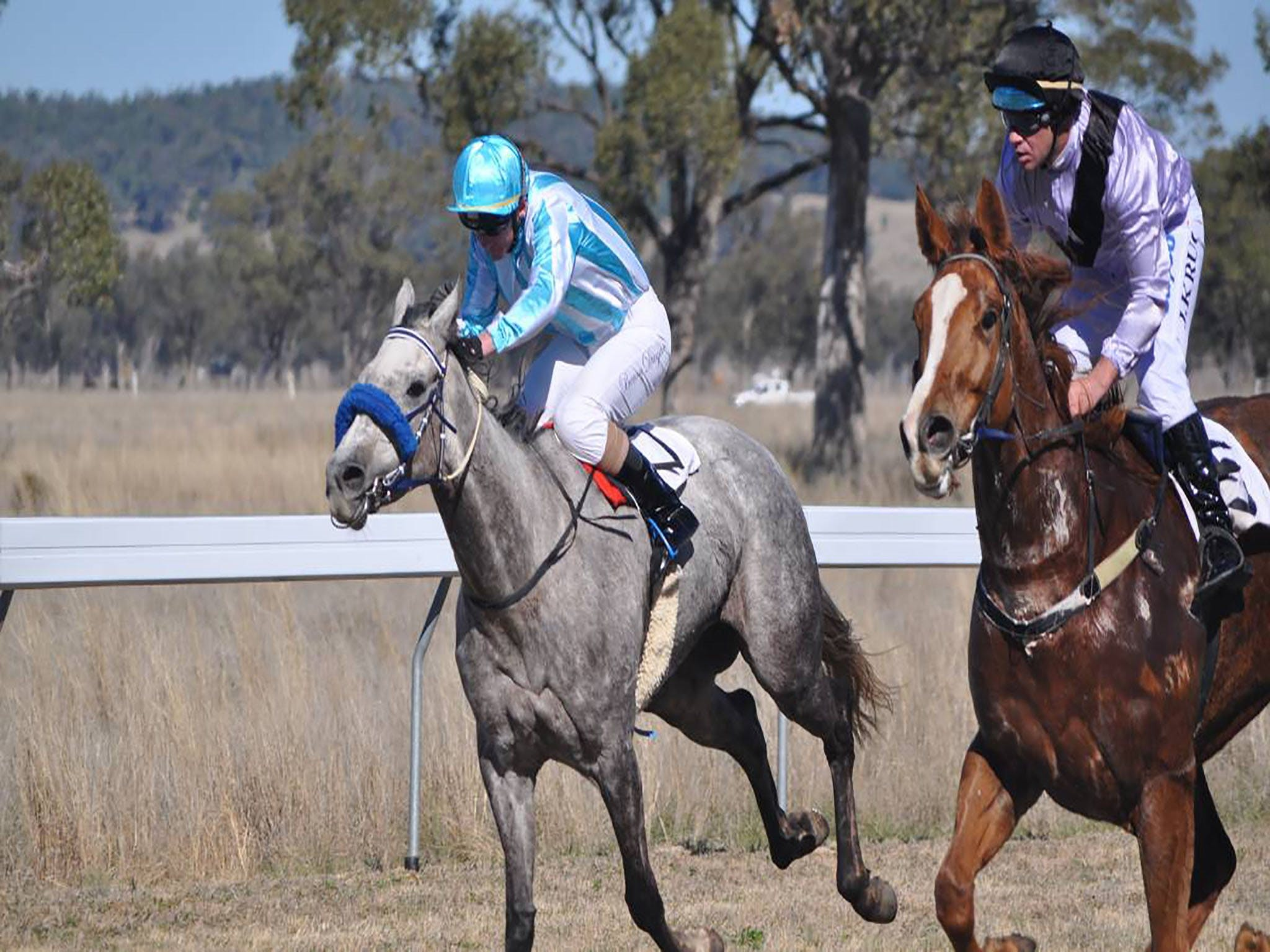 Wean Picnic Races - Accommodation Kalgoorlie