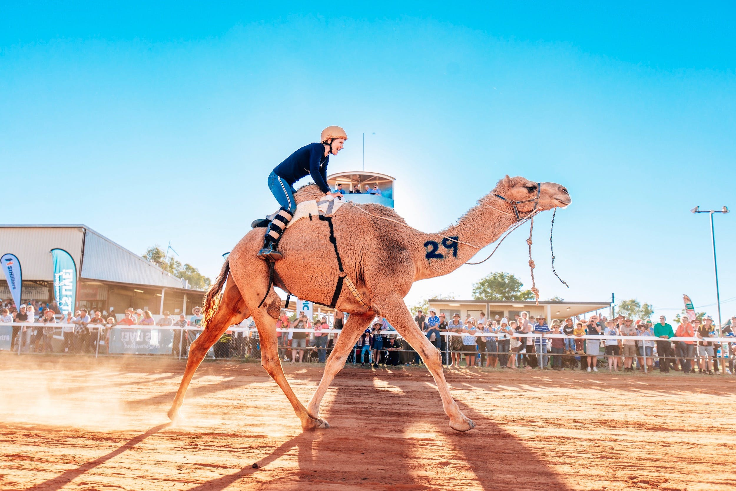 Boulia Camel Races - Accommodation Kalgoorlie